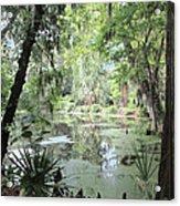 Serene Swamp Acrylic Print by Silvie Kendall