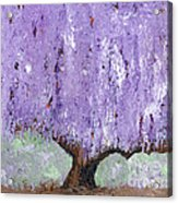 Serenity Willow Acrylic Print by Laura Charlesworth