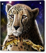 First In The Big Cat Series - Cheetah Acrylic Print
