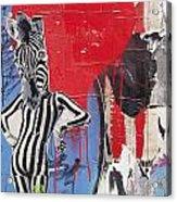 Sexy Zebra Acrylic Print