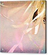 Shabby Chic Ballet I Acrylic Print