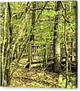 Shades Mountain Bridge In The Forest Acrylic Print