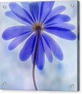 Shades Of Blue II Acrylic Print