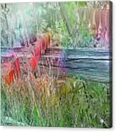 Shades Of Color Acrylic Print
