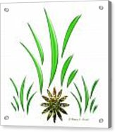 Shades Of Green Leaves And Green Flower Design Acrylic Print