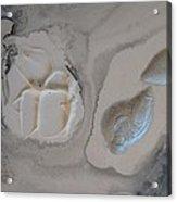 Shades Of Grey 22 Acrylic Print
