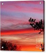 Shades Of Sunset Acrylic Print