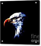 Shadow Eagle Acrylic Print