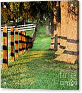 Shadow Fencing Acrylic Print