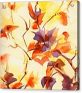 Shadow Leaves Acrylic Print