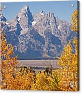 Shadow Mountain Grand Teton National Park Acrylic Print