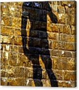Shadow Of Michaelangelo's David Acrylic Print