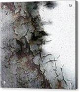 Shadow On A Wall Acrylic Print