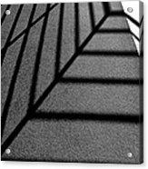 Shadows Acrylic Print