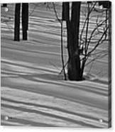 Shadows In Boyertown Park Acrylic Print