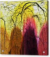 Shadows In The Grove Acrylic Print
