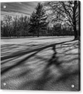 Shadows In The Park Square Acrylic Print