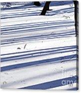 Shadows Lines On Snow In Park Acrylic Print