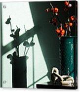 Shadows Of Fall Acrylic Print