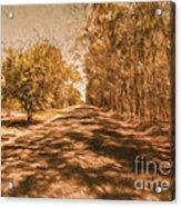 Shadows On Autumn Lane Acrylic Print
