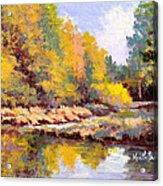 Shadowy Creek Acrylic Print