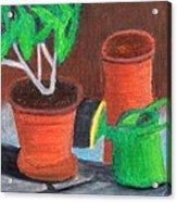 Shady Garden Corner Acrylic Print by Bav Patel