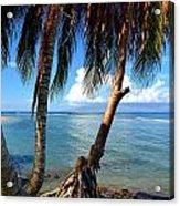 Shady Palm Beach Acrylic Print
