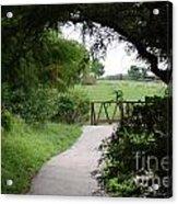 Shady Path Acrylic Print