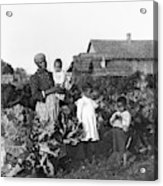 Sharecropper Family, 1902 Acrylic Print