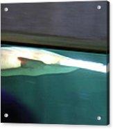 Shark - National Aquarium In Baltimore Md - 12123 Acrylic Print