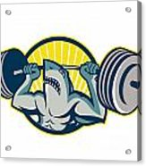 Shark Weightlifter Lifting Barbell Mascot Acrylic Print by Aloysius Patrimonio
