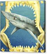 Sharks Truth... Acrylic Print