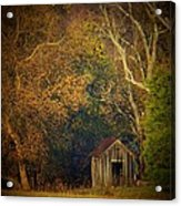 Shed And Trees Acrylic Print by Joyce Kimble Smith