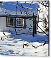 Shed In Winter Acrylic Print