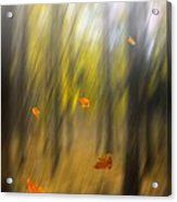 Shed Leaves Acrylic Print