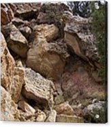 Sheep Creek Canyon Wyoming 8 Acrylic Print
