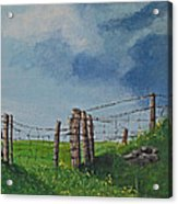 Sheep Field Acrylic Print