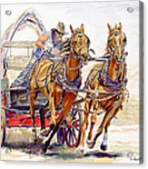 Sheer Horsepower Acrylic Print by Don Dane