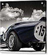 Shelby Daytona Acrylic Print