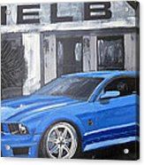 Shelby Mustang Acrylic Print