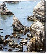 Shell Beach Rocky Coastline Acrylic Print