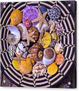 Shell Collecting Acrylic Print by Garry Gay