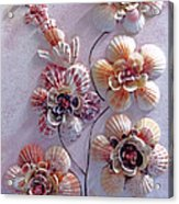 Shell Flowers  No 1  Acrylic Print