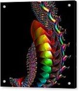 Shell Sensation Acrylic Print
