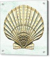 Shell Treasure-a Acrylic Print