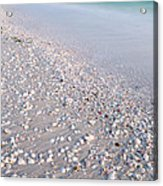 Shells In The Sand Acrylic Print