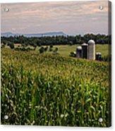 Shenandoah Corn Acrylic Print