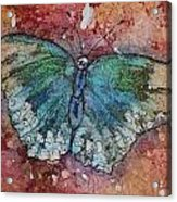 Shimmer Wings Acrylic Print