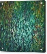 Shimmering Reflections Acrylic Print
