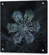 Snowflake Photo - Shine Acrylic Print